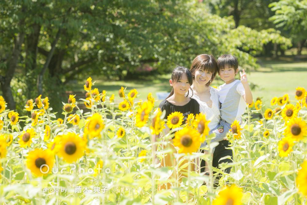 「温かみのある家族写真」緑と笑顔が溢れる家族写真の撮影