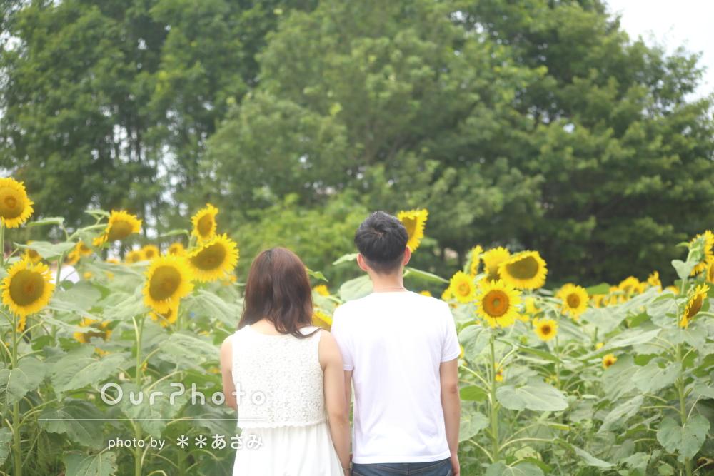 「とても楽しい時間」ひまわり畑でカップルフォトの撮影