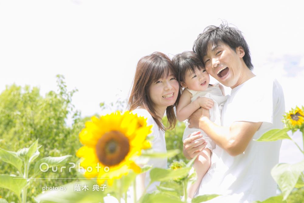 ひまわりに囲まれ笑顔こぼれる家族の記念写真の撮影