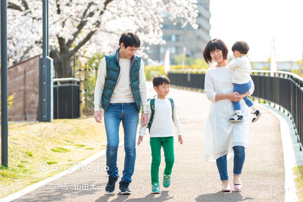 ピカピカのランドセルと満開の桜の下で!家族の記念写真の撮影