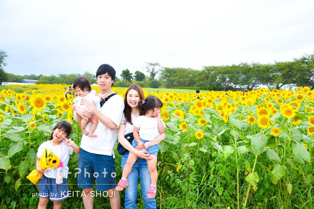「子供達3人も楽しんで撮影できました」ひまわり畑で家族写真の撮影