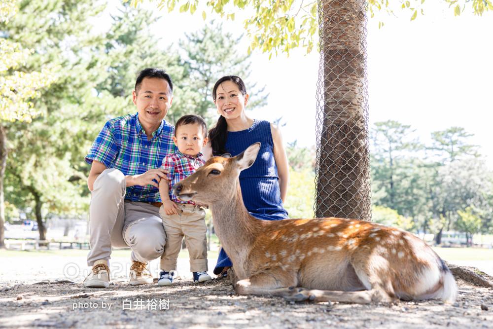 「とても自然ないい雰囲気」マタニティフォトも兼ねた家族旅行の記念写真