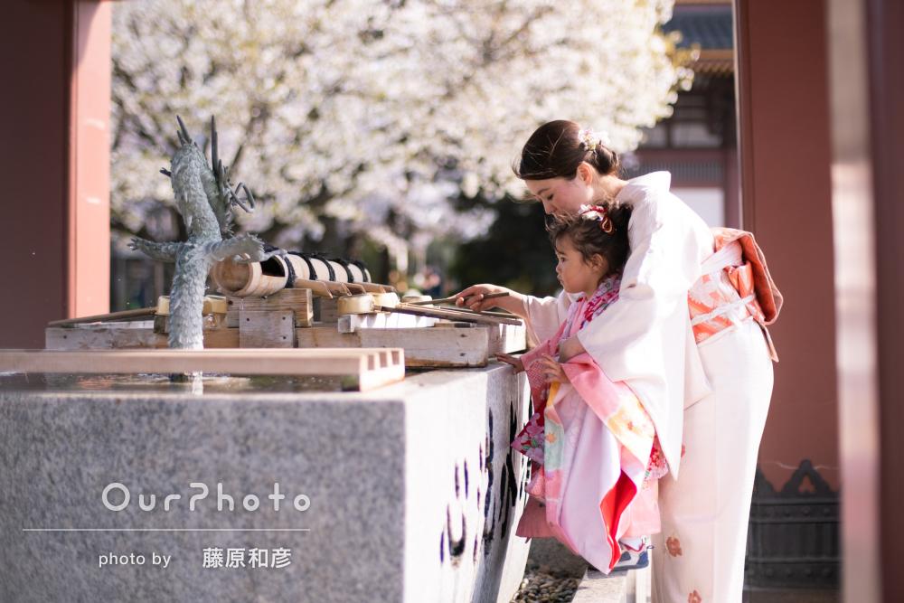 桜_春の七五三前撮り8