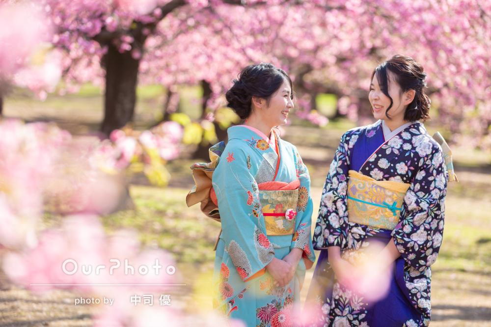 河津桜と姉妹2人で成人式の後撮り4