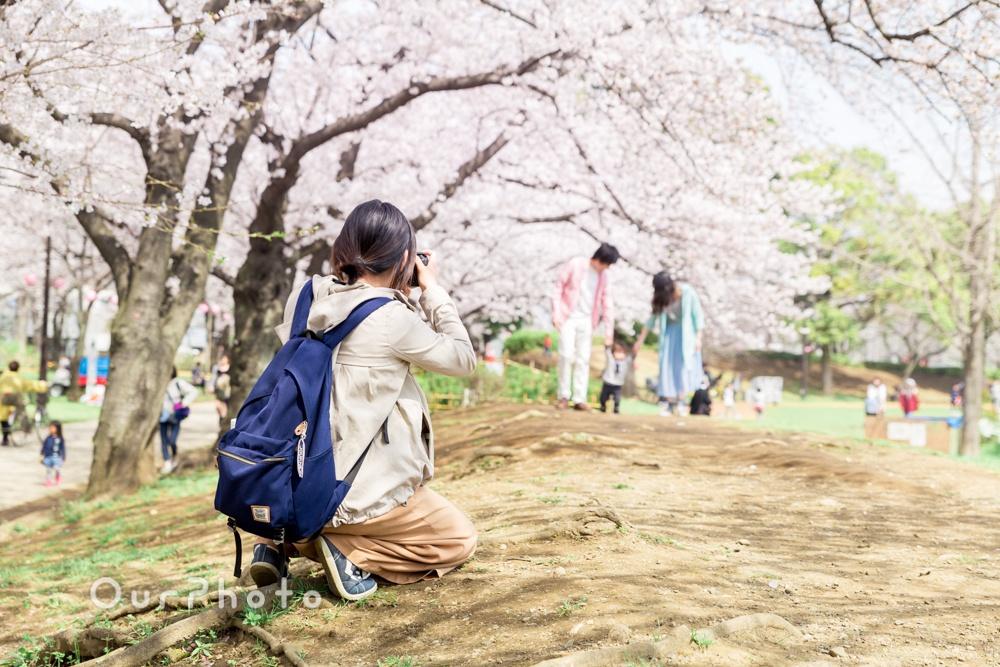 お花見撮影風景4