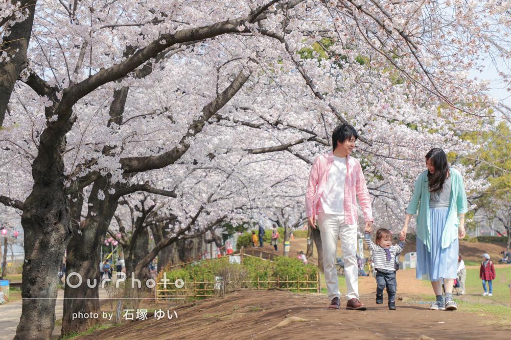 お花見撮影風景5