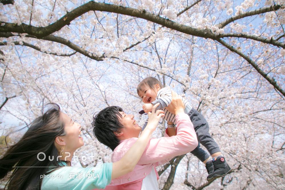 お花見撮影風景9