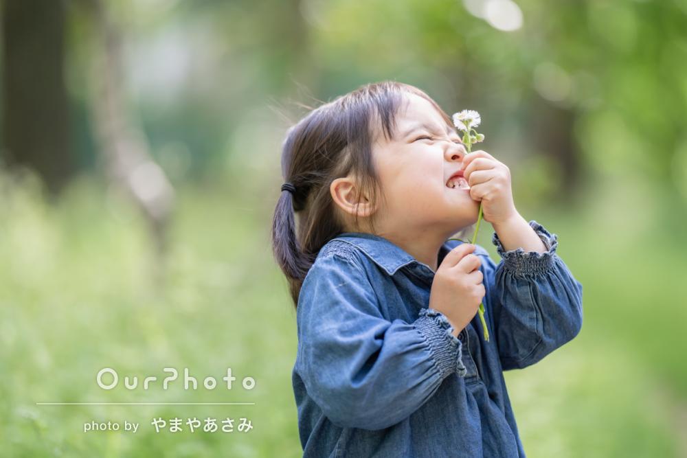 新緑が美しい公園で!自然体な姿を写す家族写真の撮影に同行12