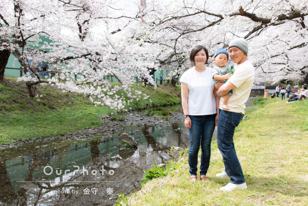 満開の桜と!カジュアルな服装のご家族の出張撮影に密着
