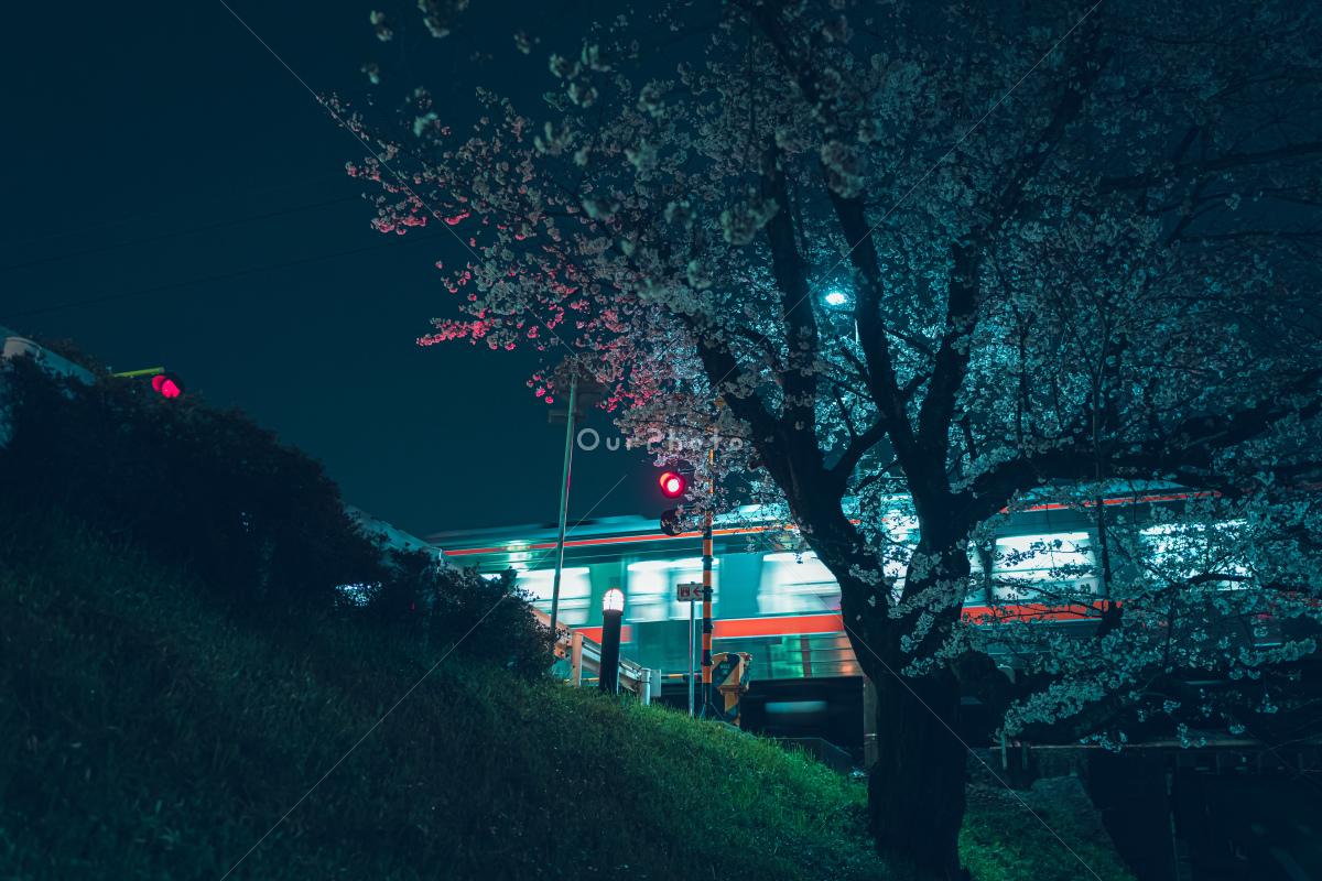 Hosono作品 その9